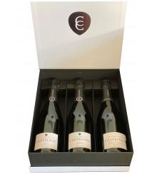 Evolution des Champagner Brut - 3 Jahre - Brut Reserve - 6 Jahre Blanc de Blanc - 12 Jahre